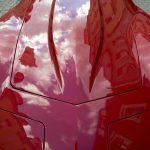 Czerwień w krajobrazie Świdnicy